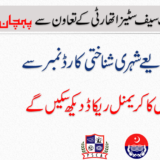 Search Criminal Records Using CNIC – Lahore Police