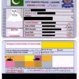 Traffic License Verification System